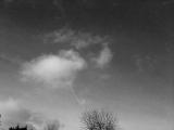 Foto 2014.12.27 09 42 52_small